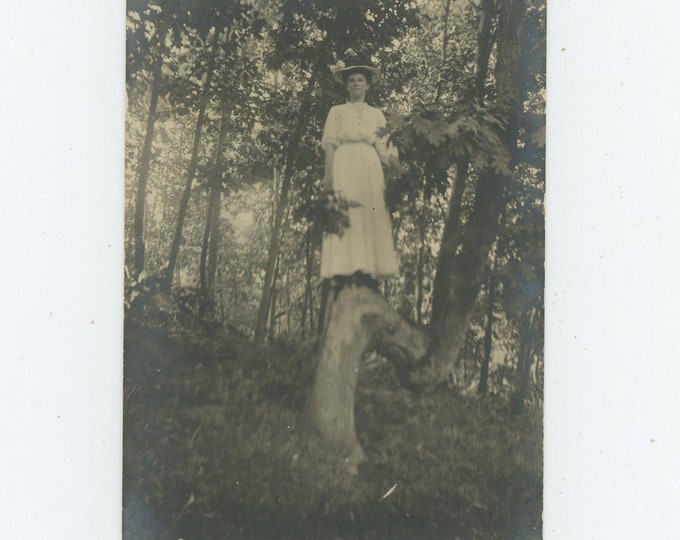 Vintage Snapshot Photo: Woman Up A Tree, c1910s (88712)