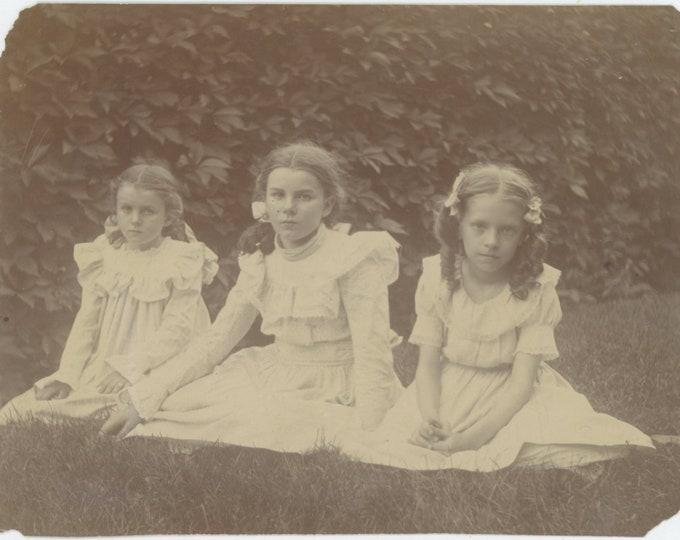 Vintage Snapshot Photo: Three Girls, Early 1900s [93793]