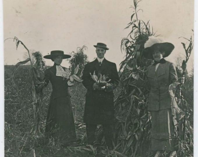 Vintage Snapshot Photo: Picking Corn, Early 1900s [810736]