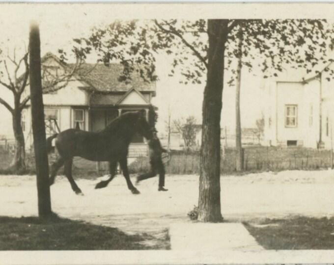 Vintage Snapshot Photo: Trotting a Horse, c1910s [89724]