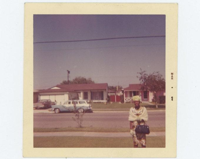 Vintage Snapshot Photo: March, 1964 (73553)
