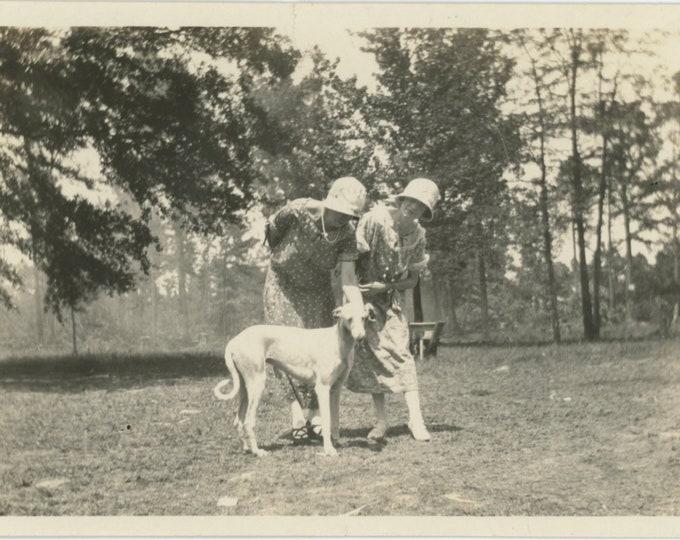 Vintage Snapshot Photo: Two Women with Italian Greyhound [Mix] Dog, 1920s [86696]