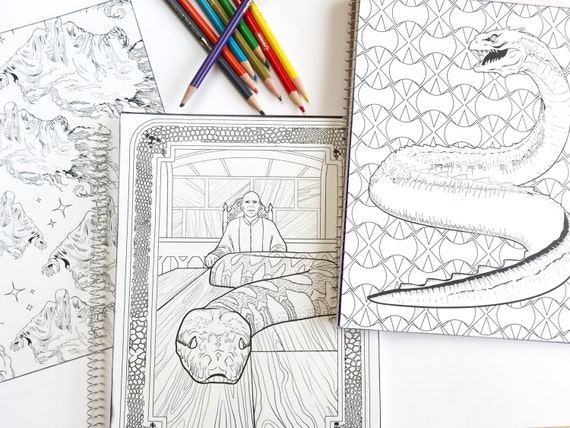 Harry Potter Adult Coloring Book Notebook Set Of 3 With Voldemort A Basilisk And Dementors