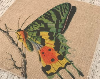 Butterfly Burlap Panel, Spring Printed Fabric