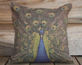 Peacock Pillow Cover, Burlap Feed Sack, Cushion, Blue Green, Shabby Chic, Accent Pillow, Decorative, 16x16