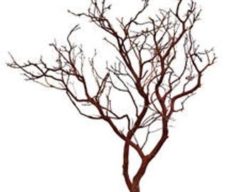 Natural Red Manzanita Branches - 30 inches tall