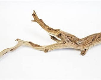 "Sandblasted Ghostwood (California Driftwood), 10-12"",  2 Pieces"