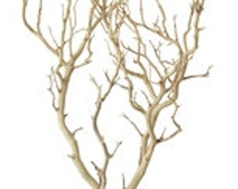 Sandblasted Manzanita Branches - 30 inches tall, 2 pieces