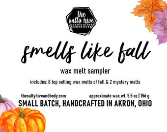 smells like fall wax melt sampler box - mystery wax melt included