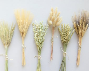 Dried Grass Bunches, Dried Flowers, Dried Flower Sampler Set, Flowers for Bud Vase, DIY Dried Flowers, Dried Wheat, Fall Decor, Bunny Tails