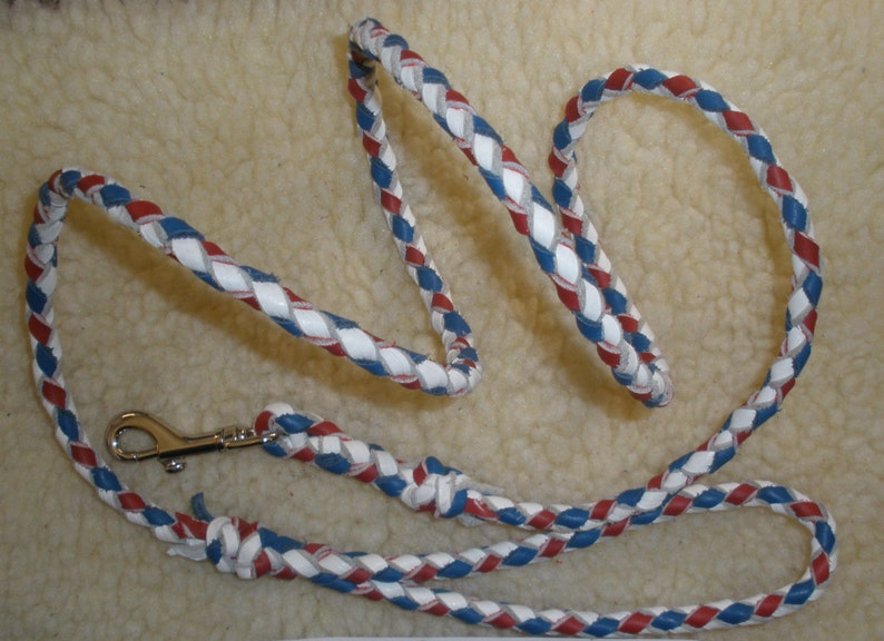 RED silver bolt snap Leather dog leash Braided 4 strand 38 X 56 walking or show leash WHITE and BLUE