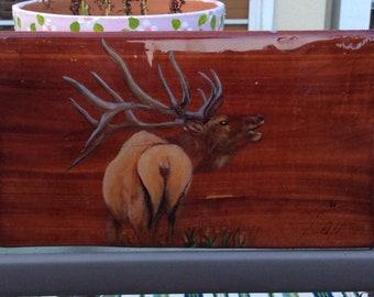 Elk in the Wild - Original Wood Burned Painting on Cedar