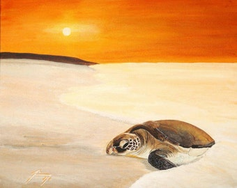 Sea Turtle at Dawn  - 8 X 10 Framed Print