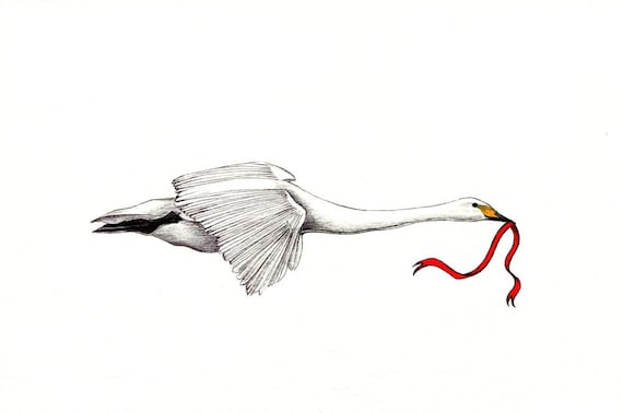 Aninimal Book: Flying Swan art print of an original drawing available   Etsy