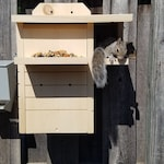 Squirrel Nesting Box made to order