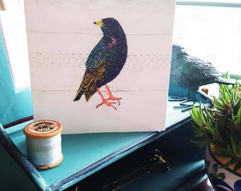 Starling greeting card 14 cm square