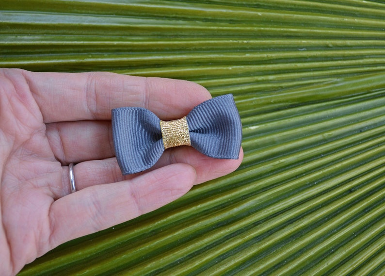 Modern Bow Alligator Clip with Metallic Gold Trim // Bow Tie image 0