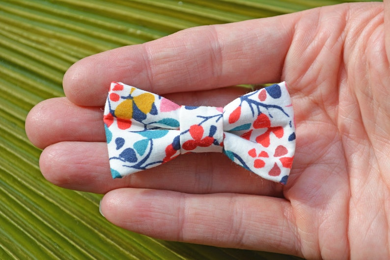 Liberty of London Modern Bow Alligator Clip // Bow Tie image 0