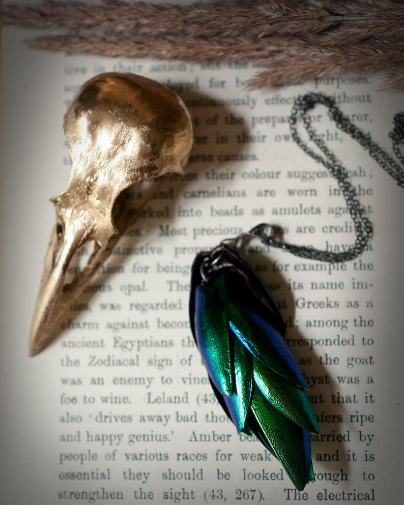 Beetle wing necklace elytra from the Jewel Beetle iridescent image 0