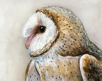 Barn Owl Watercolor Art Print, Barn Owl, Bird Painting, Bird of Prey, Wildlife, Animal Illustration, Forest Creatures, Owls