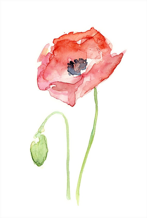 Red poppy flower art print of watercolor painting plants etsy image 0 mightylinksfo