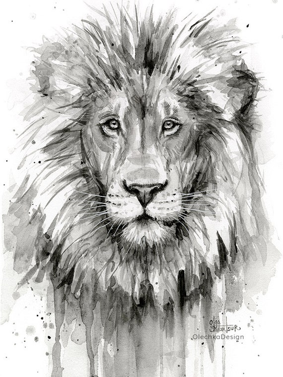 lion watercolor painting black and white lion art print etsy