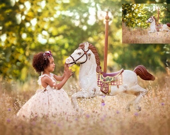 INSTANT DOWNLOAD-Carousel Field- Unicorn & Horse Digital Background for Ps and Pse-Unicorn Digital Backdrop- Photoshop Composites