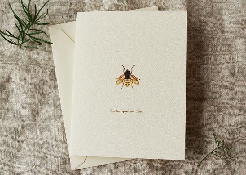 10 Bee Folded Note Cards with Envelopes  Blank Greeting Card image 0