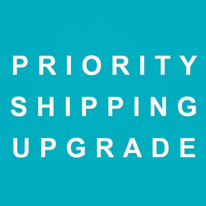 Priority Shipping Upgrade  2-3 day image 0