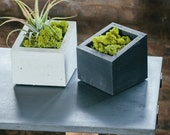SALE!! ANGL Modern Concrete Planter