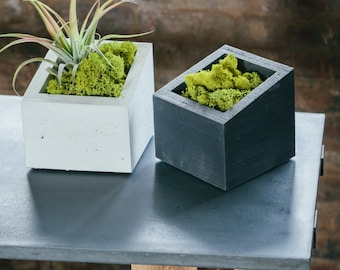 SALE!! ANGL Modern Concrete Planter