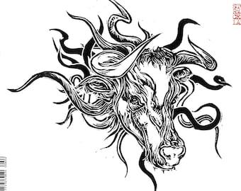 Storm Cellar 6.2 print