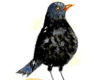 "Original Blackbird Watercolour 12"" x 9"""