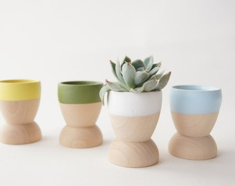 Mini Planters set of 4, Blue, Green, Yellow and White, Natural Wedding, Spring Decor