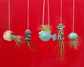 An Octopus Garden Collection of 5 Mini Hanging Air Planters, Gift for Mom
