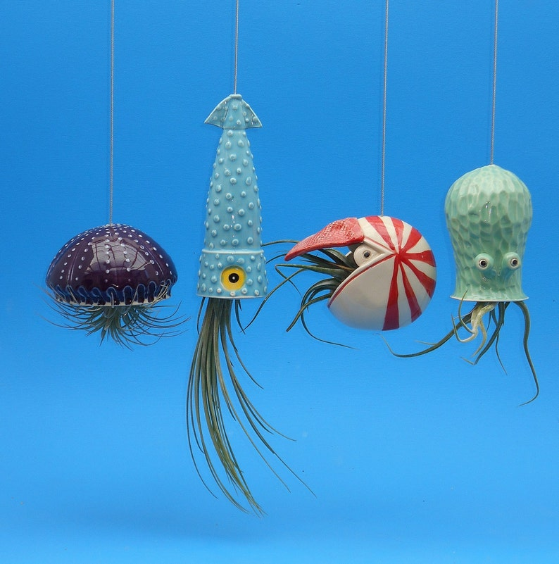 Christmas In Octopus Garden >> Octopus Garden Of 4 Large Planters For Air Plants