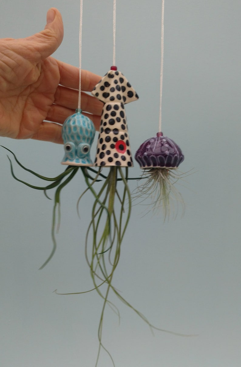 Christmas In Octopus Garden >> Mini Octopus Garden Set Hanging Planters Collection Of 3 Squid Jellyfish And Octopus