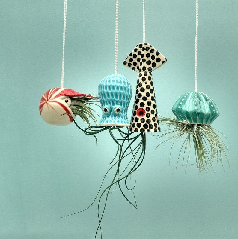 Christmas In Octopus Garden >> Octopus Garden Collection Of 4 Small Hanging Air Planters