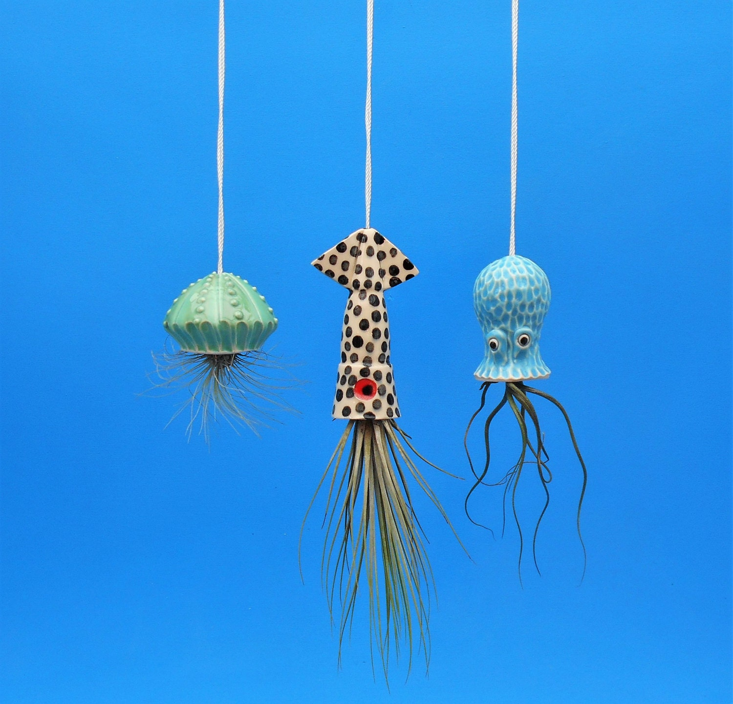 Air Plant Small Hanging Planter Octopus Garden Collection ... - photo#42
