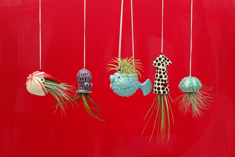 Christmas In Octopus Garden >> An Octopus Garden Collection Of 5 Mini Hanging Air Planters Gift For Mom