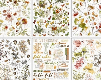 49 Market RUB ONS, Botanical Transfers, 49 Market In The Leaves, Autumn Transfers, 49 Market Vintage Artistry, In Leaves Transfers