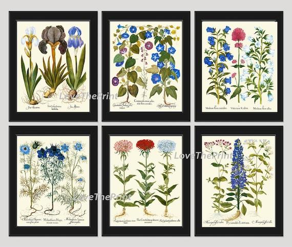 2 Casa de Muñecas en Miniatura de colección botánica fotos W7