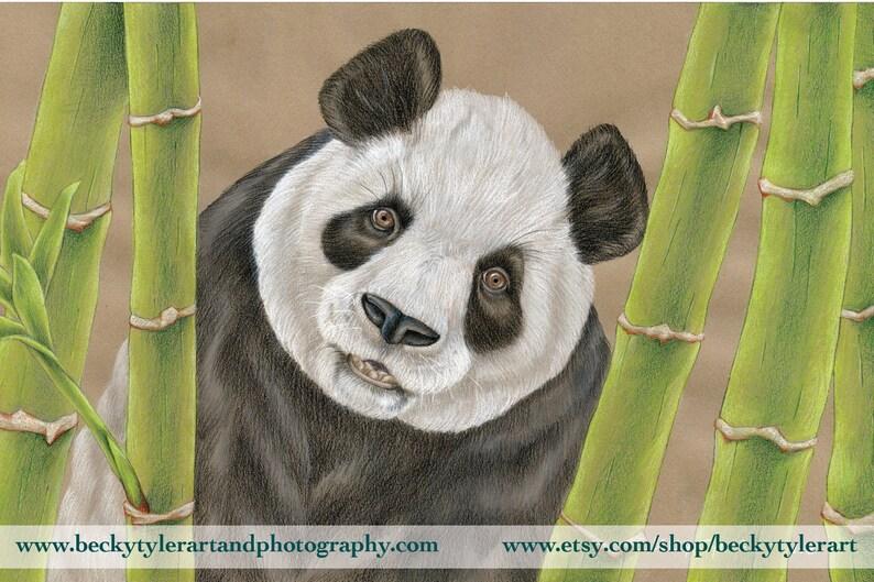 Panda gigante amigurumi - schema uncinetto gratuito | Amigurumi ... | 529x794