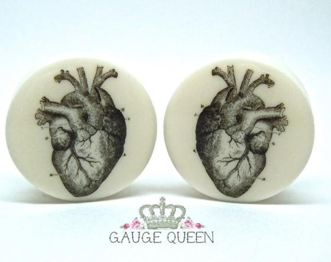 "Anatomical Heart Plugs / Gauges. 2g / 6.5mm, 0g / 8mm, 00g / 10mm, 1/2"" / 12.5mm, 9/16"" / 14mm, 5/8"" /16mm, 3/4"" /19mm, 7/8""/ 22mm, 1""/ 25mm"