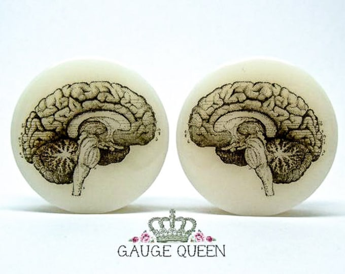 "Anatomical Brain Plugs / Gauges. 2g / 6.5mm, 0g / 8mm, 00g / 10mm, 1/2"" / 12.5mm, 9/16"" / 14mm, 5/8"" /16mm, 3/4"" /19mm, 7/8"" /22mm, 1"" /25mm"