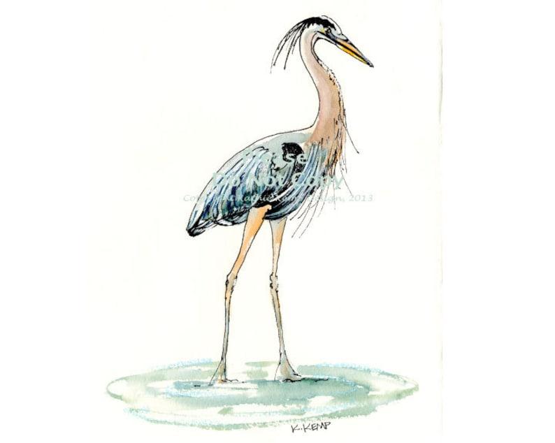 Blue Heron Bird Pen Ink Watercolor Illustration Drawing Beach Decor Gift Idea Bird Watchers Lake House Marsh Birds Gray Blue Aqua Black