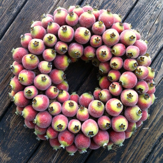 Fruit Wreath, Sugared Pomegranate Fruit Wreath