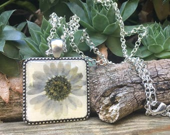 boho necklace, real flower Jewelry nature necklace daisy pendant, real flower jewelry, pressed flowers, daisy necklace, daisy jewelry