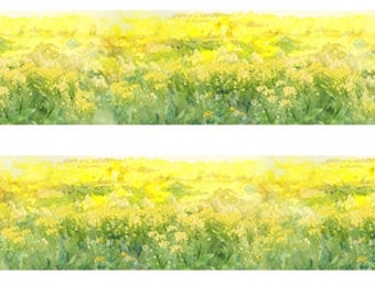 1 Roll of Limited Edition Washi Tape- Canola flower Field