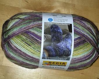 Regia Socks wool Alaska color 8942